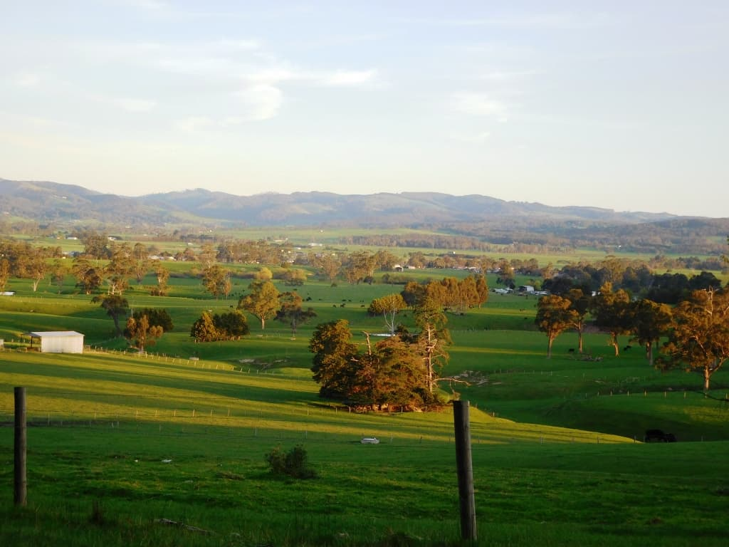 How Green Is My Valley: