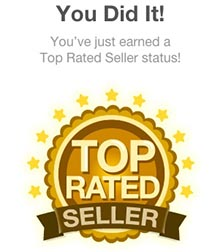 Fiverr Top Rated Seller!