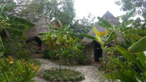 The bungalows at Bacoma. They were cozy, comfy, and surrounded by greenery. No hostel so a little more expensive.