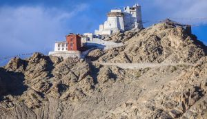 Namgyal Tsemo Monastery, perched on top of Leh for a relaxed view of the city away from the traffic and buzz.