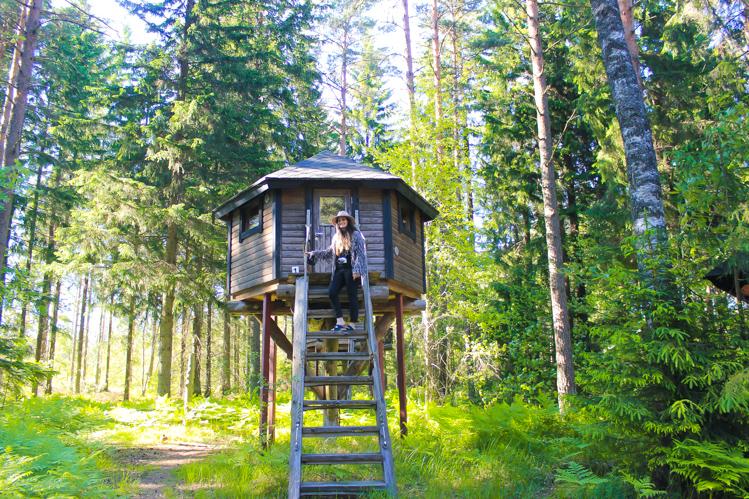 Storfinnhova Forest Village The Wanderlust Bug 8