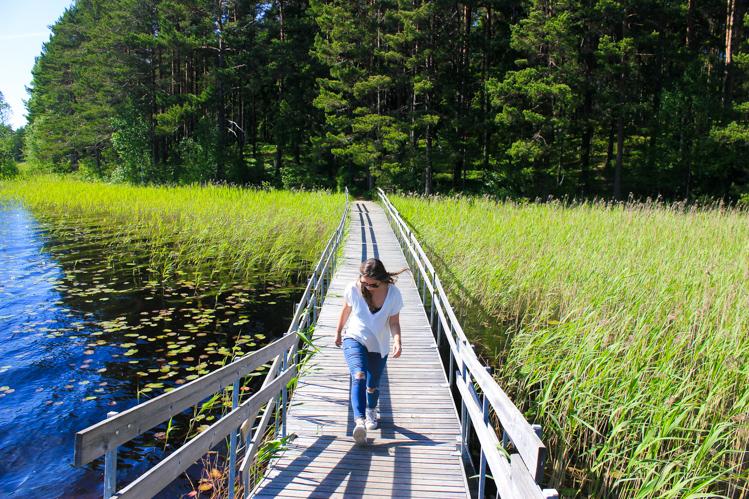 Teijo National Park The Wanderlust Bug 2