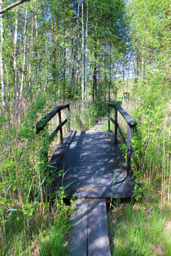 Teijo National Park The Wanderlust Bug 5