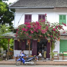 Why Luang Prabang is the Place for 30-Somethings to Party in Laos