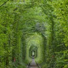 How to Get to the Tunnel of Love in Ukraine