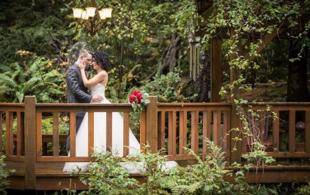 Photo: Stan Novotny Photography | Secret Garden Design Palette