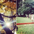 instagram_the_wild_swans_autumn_fall_leaves_childhood_memories_amazing
