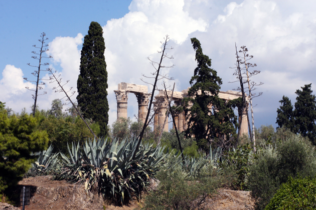 reiss-temple-of-zeus-smaller