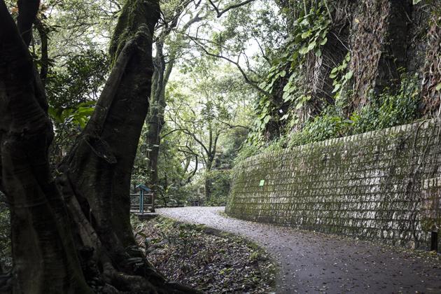 hong-kong-photo-diary-natural-park-07