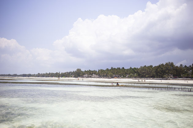 zanzibar-travel-diary-sea-03