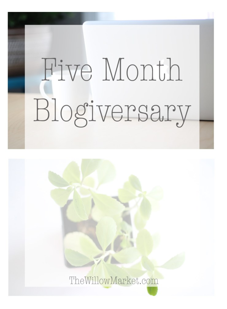 Five month Blogging anniversary. Blogging for six months.
