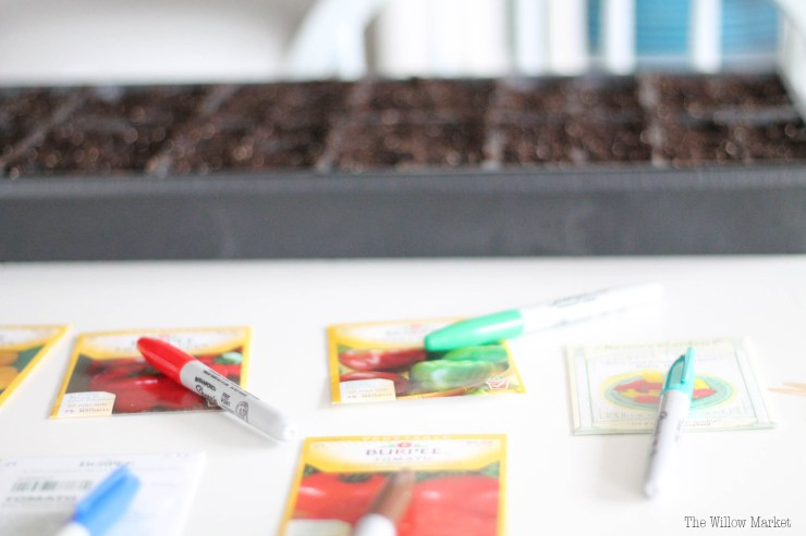 Why we love to garden. Time to plant seedlings in central Illinois!