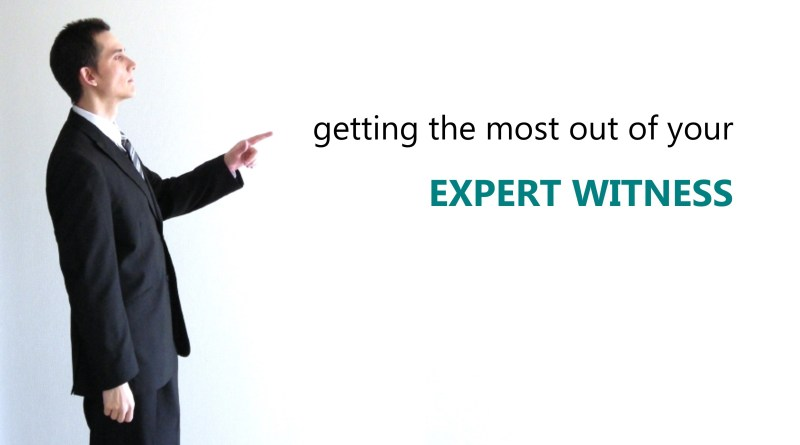 Getting the most out of your expert witness