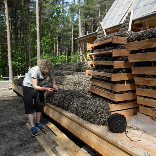 Building a Seaweed House