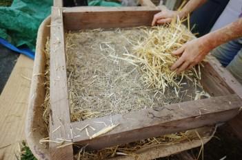 sifting-chopped-straw