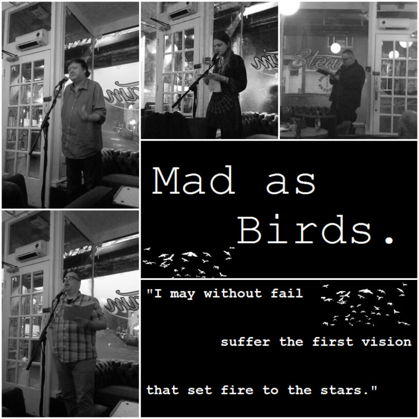 Mad As Birds 2