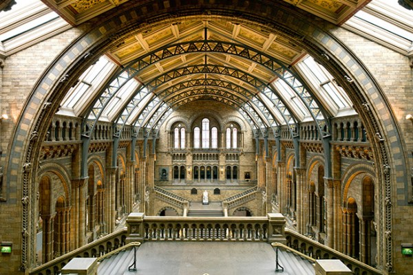 Image: Natural History Museum