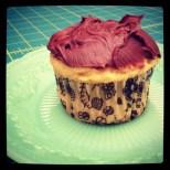 Necessary cupcakes.