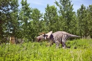 Field Station: Dinosaurs - Triceratops - Secaucus, NJ