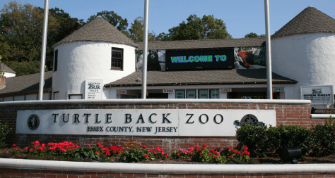 new jersey zoos | nj zoos | zoos in new jersey | zoos in nj | free zoos in new jersey | free zoos in nj