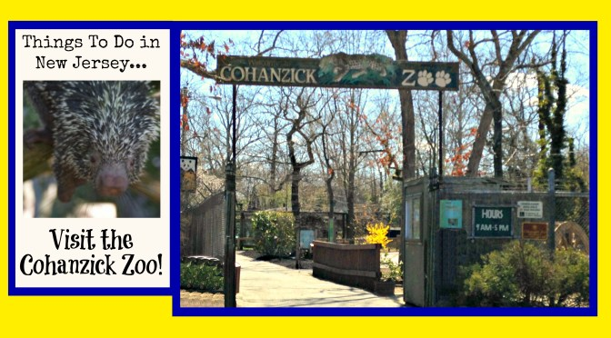 Visit the Cohanzick Zoo – New Jersey's First Zoo!