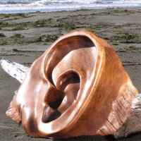 Jeffro Uitto's Driftwood Sculpture