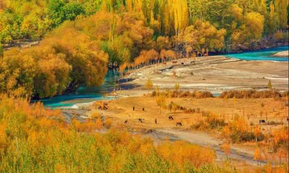 Gilgit 1