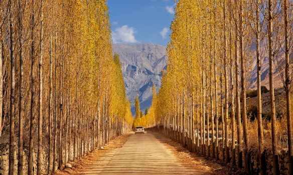 Gilgit 8