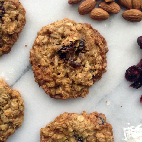 coconut almond cranberry cookies