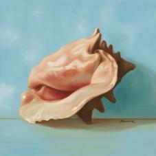 """""""Shells"""" by Julianne Marcoux"""