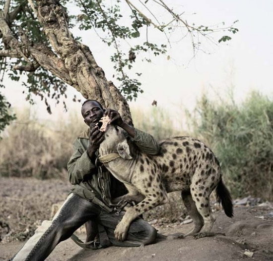 In Africa You Can Have A Hyena Baboon Or A Python As A Pet