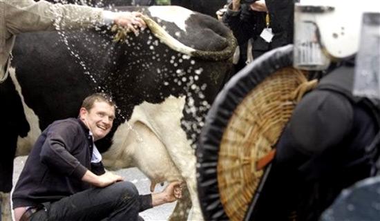 milkmanattacked