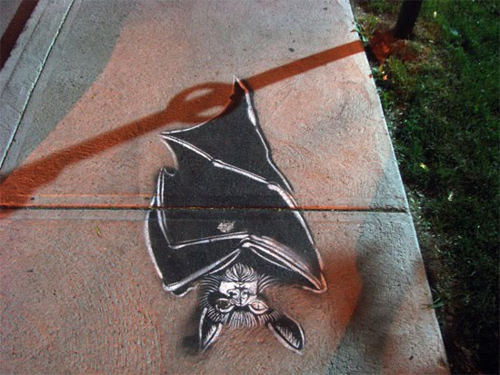 bat-shadow-art
