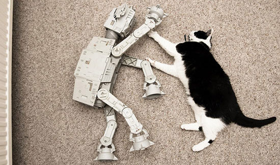 at-and-t-and-cat