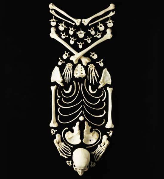 bomb-bones2