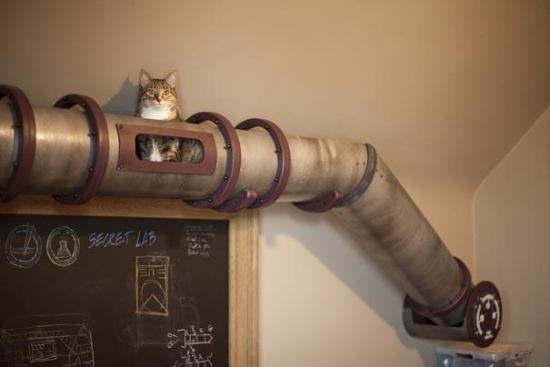 furniture-design-for-pet-lovers-7-2