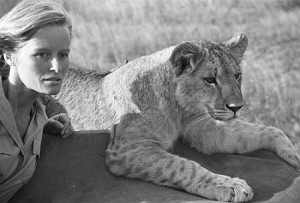 famous animals