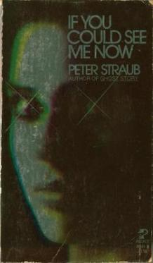 If You Could See Me Now original paperback cover