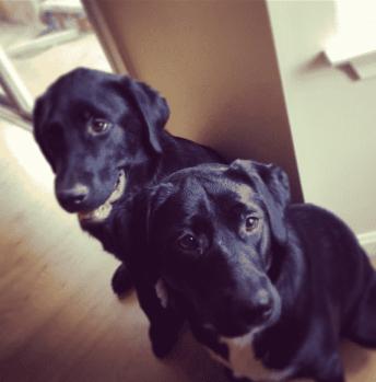 Keira and Mack