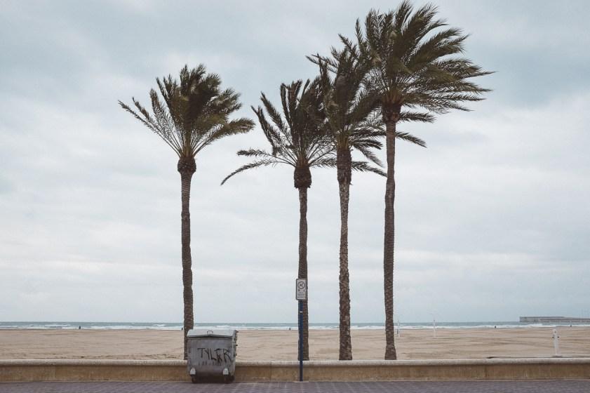 Valencia_Fallas-3558