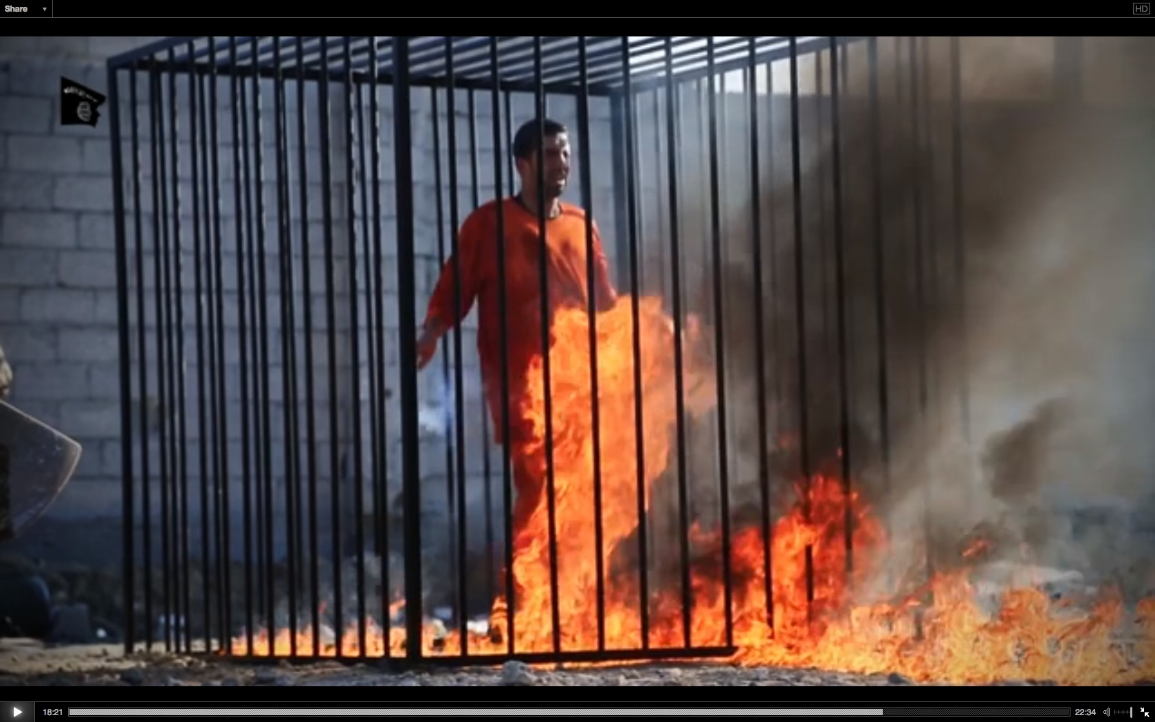 The Jordanian Pilot Was Not Burned Alive Thomas Wictor