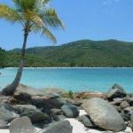 Little Magens Bay Beach – St .Thomas USVI