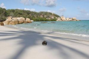 Lizard Island, Queensland