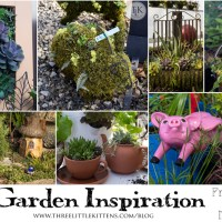 Garden Inspiration From Your Local Nursery