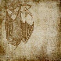 31 Days of Halloween Digital Goodies - Scary Scrapbook Paper Vampire Bat