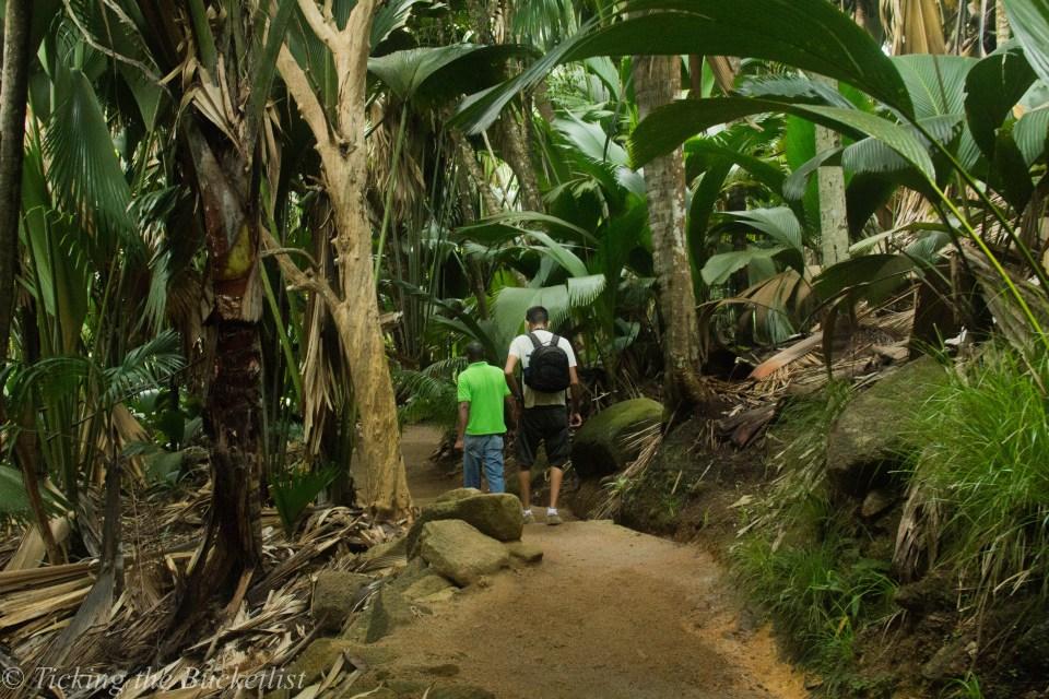 Exploring Vallee de Mai with Marc