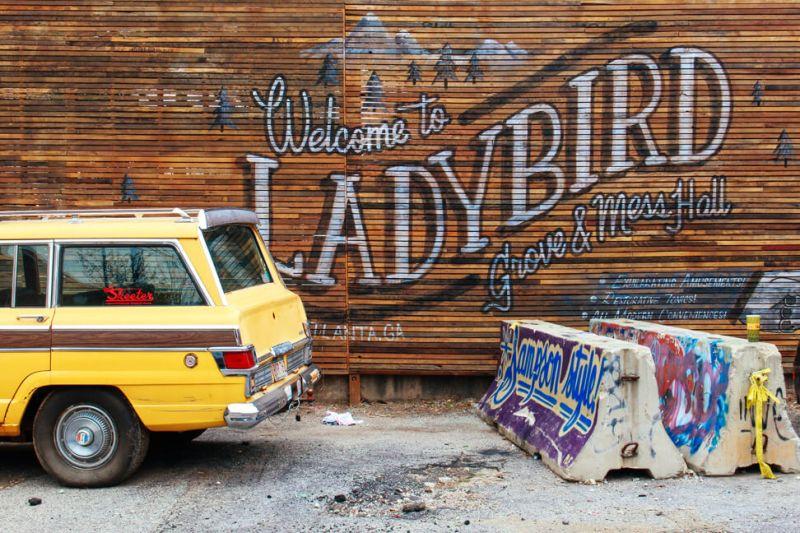 ladybird-atlanta-1a