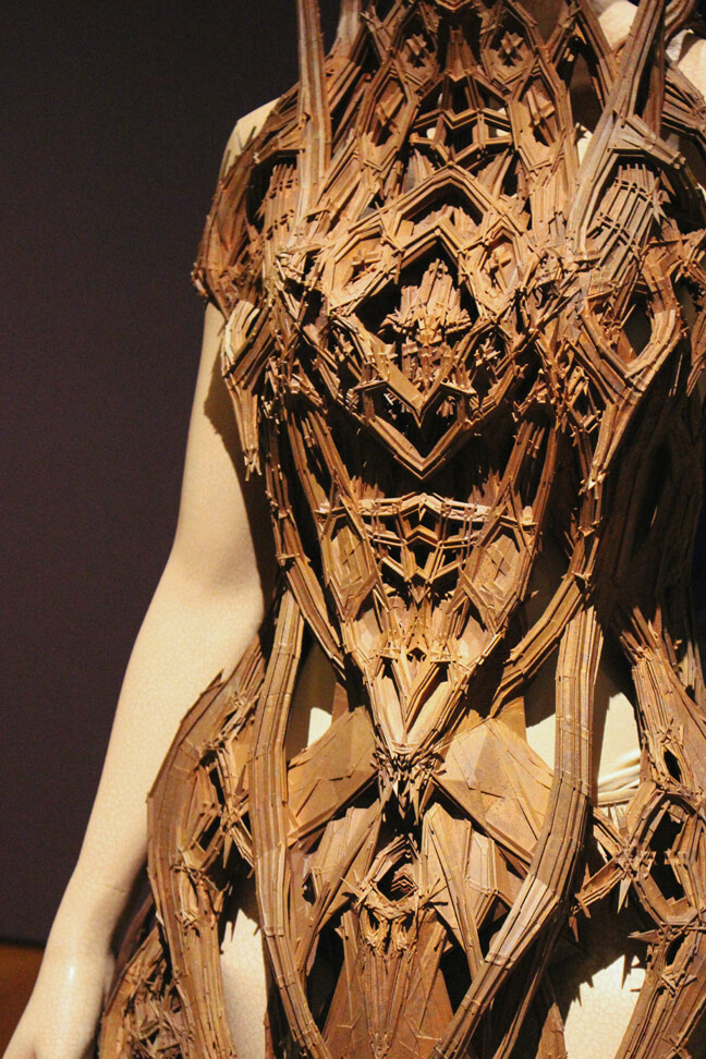 iris-van-herpen-transforming-fashion-3a
