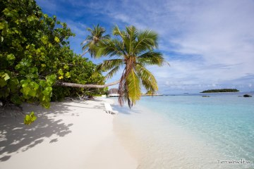 bandos_resort_maldivas