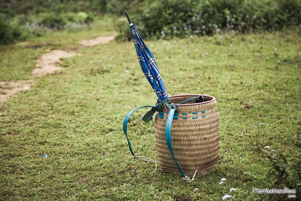 Entre arrozales, un trekking por SAPA